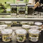Useful Tips to FInd the Best Medical Marijuana Dispensaries