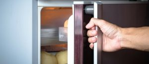 About Your Refrigerator